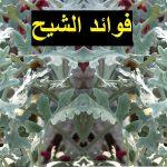 فوائد نبتة الشيح Artemisia